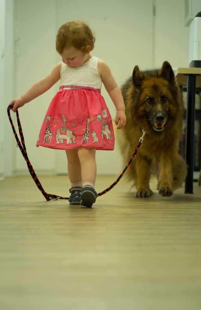 Hund und Kind sorgen für das gute Betriebsklima, Steuerberatungsbüro Claudia Seiffert in Dierdorf